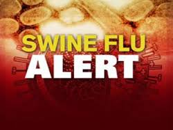 swine flu|prevention|treatment|causes|flu