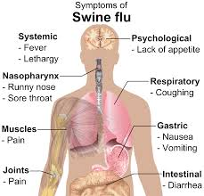Swine Flu |Swine Flu Symptoms|Swine Flu Causes |Swine Flu Treatment|Swine Flu  prevention|swine flu natural prevention|swine flu|natural medicine