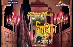 Naagin TV Serial Cast | Story | Timings
